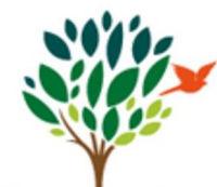 Lime Tree Primary School