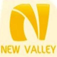 New Valley Primary School